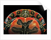 Chrysemys picta bellii (painted turtle) by Corbis