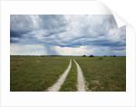 Sand road and thunderstorm, Botswana by Corbis