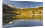 Alpine lake near Lavarella and Fanes huts,Sennes, Fanes, Braies Natural Park, Alto Adige, Italy by Corbis