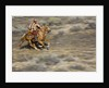 Cowgirl riding at full speed in motion by Corbis