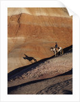 Rider with Shadow coming down Hill in Painted Desert by Corbis