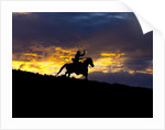 Cowboy in silhouette with sunset by Corbis
