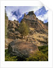 Crooked River Petroglyph by Corbis