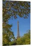 Eiffel Tower view from Champ de Mars by Corbis