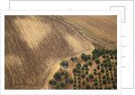 Landscape from above between Tel Aviv and Jerusalem. by Corbis