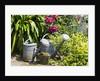 Gardening by Corbis
