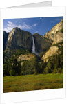 Yosemite Falls by Corbis