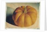 Pumpkin by Jennifer Kennard