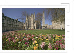 Gardens on East Side of Bath Abbey by Corbis