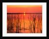 Sunset Over Lake Hamilton by Corbis