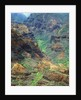 Waimea Canyon by Corbis