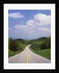 Highway Passing Through Taledega National Forest by Corbis