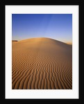 Ripples Covering Sand Dune by Corbis