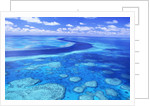 Australia's Great Barrier Reef by Corbis
