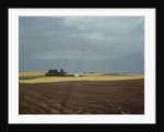 Fields, Moses Lake by Mary Iverson