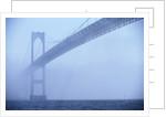 Newport Bridge in Fog by Corbis