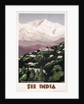 See India Poster by Shep