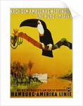 Hamburg-Amerika Linie Poster by Albert Fuss