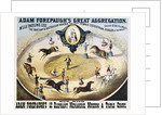 Adam Forepaugh's Great Aggregation Poster by Corbis