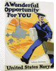 A Wonderful Opportunity for You Recruitment Poster by Ruttan