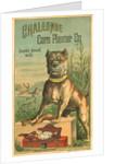Challenge Corn Planter Co. Trade Card with Bulldog by Corbis