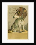Ye Prize Setter Trade Card by Corbis
