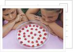 Children Eying Raspberry Dessert by Corbis