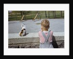 Boy Standing with Kitten in Schoolyard by Corbis