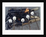 Cooking Marshmallows over Campfire by Corbis