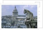 Gargoyle Looking Toward the Pantheon by Corbis