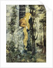 Grimm's Fairy Tales Book Illustration with Rapunzel in Her Tower by Corbis