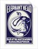 Elephant Head Matchbox Labels by Corbis