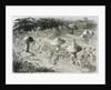 An Elfin Dance by Night Illustration by Richard Doyle