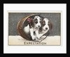 Expectation Postcard by Corbis