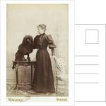 Albumen Print Card Showing Woman with a Black Miniature Poodle by Corbis