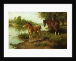 A Mare and Her Foal by Basil Bradley