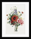 Bouquet of Foxglove, Poppy, and Peony by Jean Louis Prevost