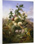 Nature's Gold by John Wainwright