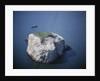 Bass Rock by Corbis
