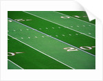 Football Field by Corbis