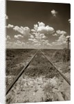 Old Railroad Tracks by Corbis