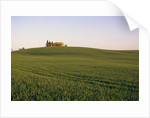 House on Grassy Hill by Corbis