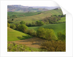 Countryside in Val d'Orcia by Corbis