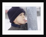 Boy Putting Tongue to Frozen Pole by Corbis
