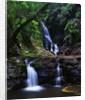 Elabana Falls by Corbis