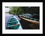 Tour Boats Moored in Ventanilla Lagoon by Corbis