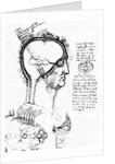 Anatomical mechanics of the eye by Corbis