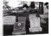 Hartsdale Canine Cemetery by Corbis