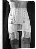 Girdle With Garters Displayed on Mannequin by Corbis