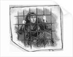 Insane Girl Behind Bars; Woodcut by Corbis